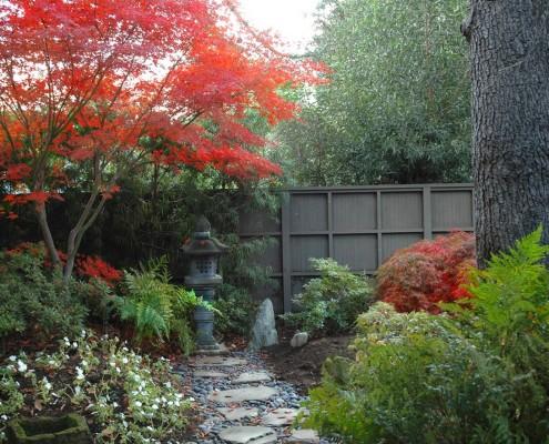 Японский стиль. Японский клен осенью