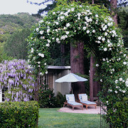 Фигурная арка цветов