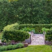 Живая изгородь, как элемент ландшафтного дизайна загородного дома и дачи