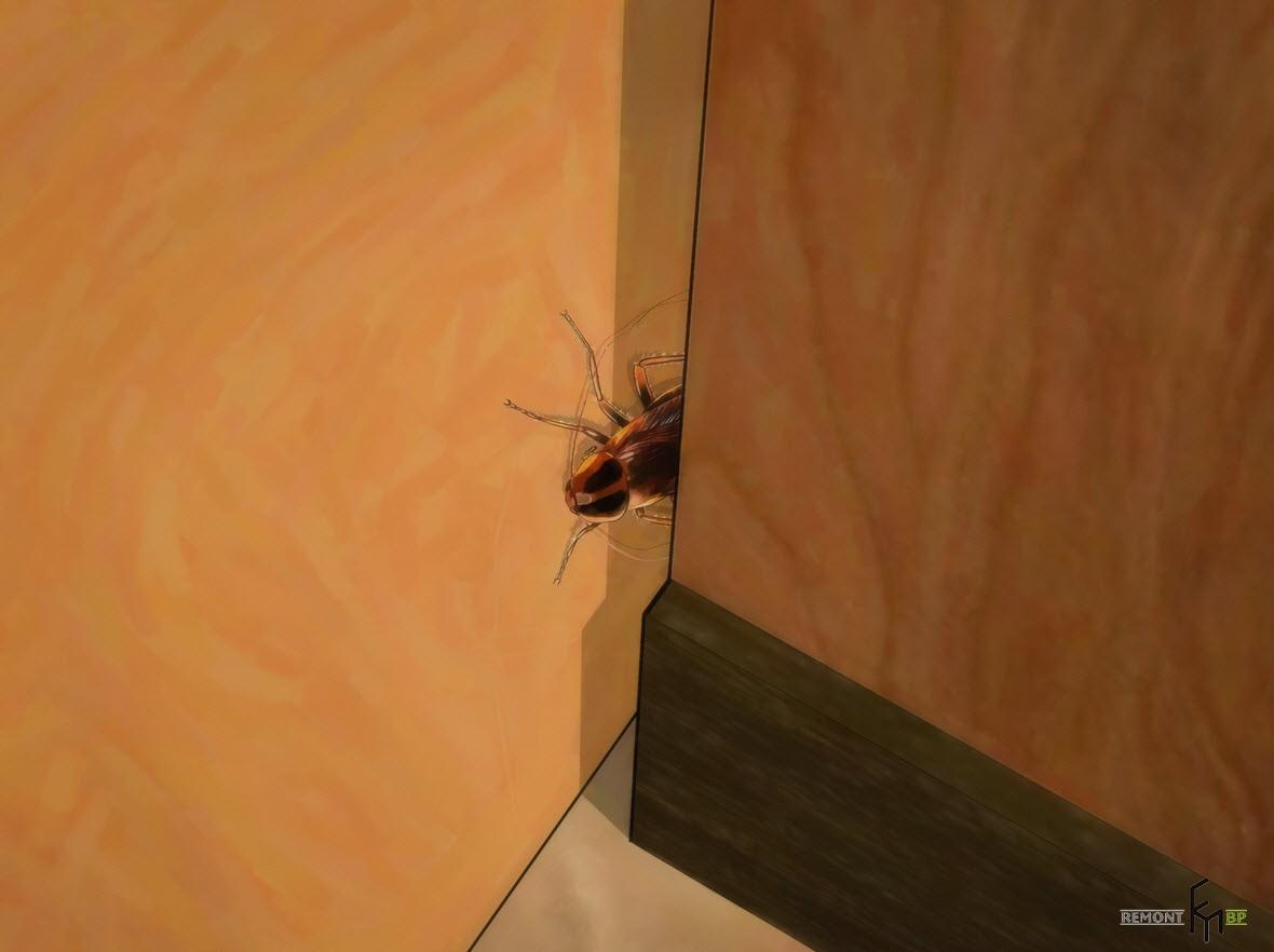 Трещины - отличная лазейка для тараканов