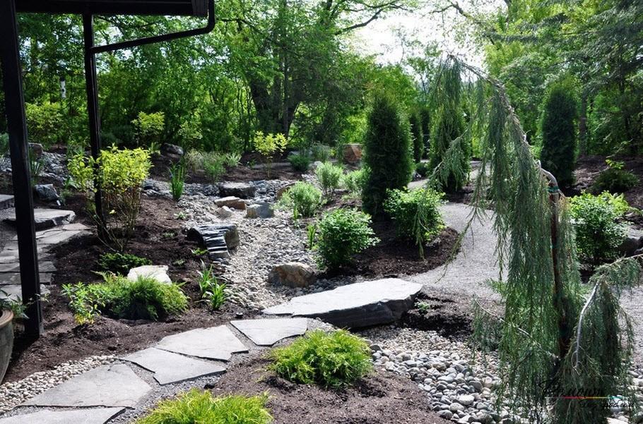 Цветочный дизайн саду