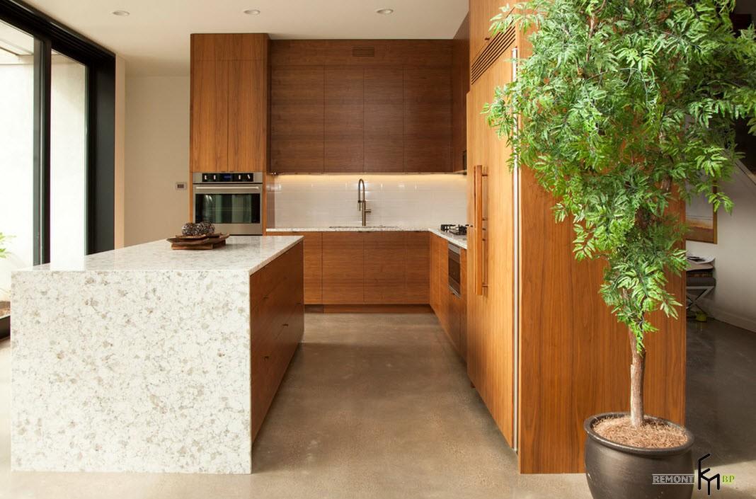Кухня с декоративным растением