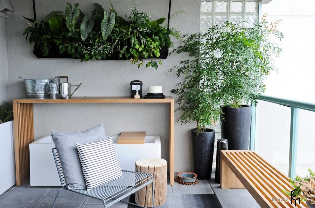 Изысканные растения в интерьере