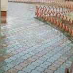 Пример тротуарной плитки