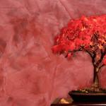 Декоративная венецианская штукатурка: технология нанесение и фото в интерьере