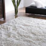Уход за ковром: чистка, вывод пятен