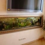 Продолговатый аквариум