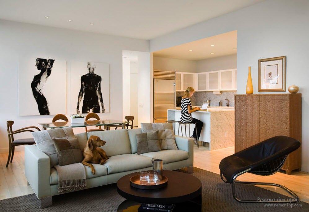 Комната студия с кухней в хрущевке дизайн
