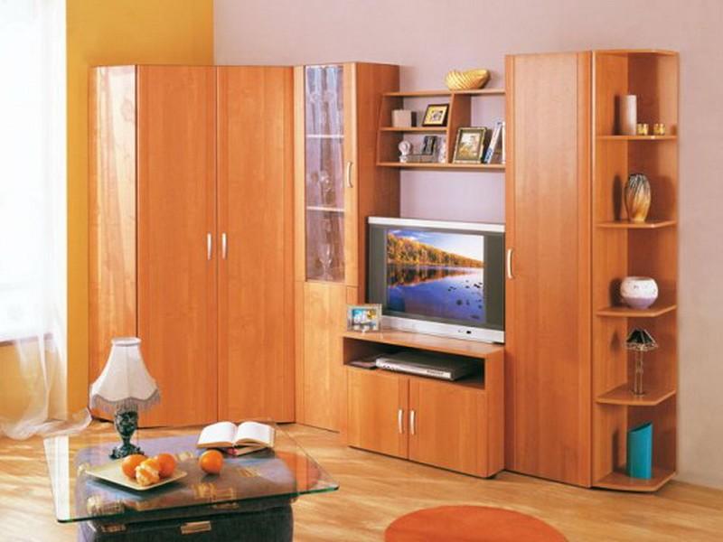 Корпусная мебель для гостиной угловая