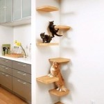 Идеи для котов