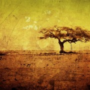 Африканский интерьер