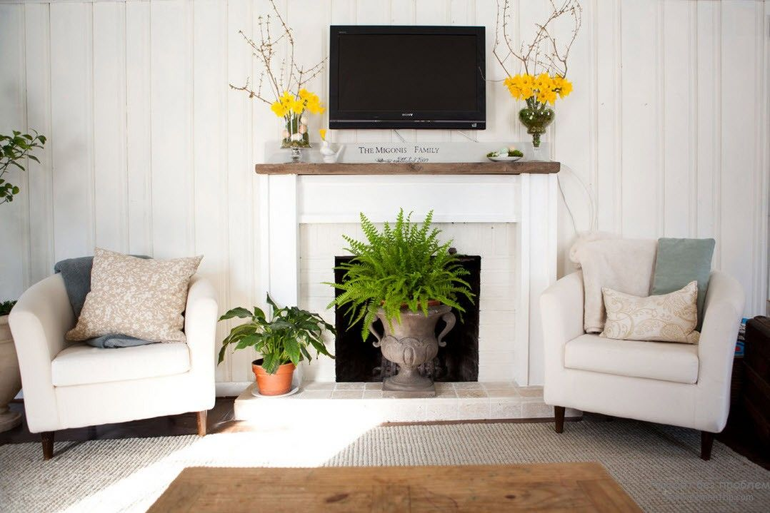Зеленые растения в гостиной на фото