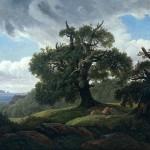 Стильный ламинат «дуб» в интерьере