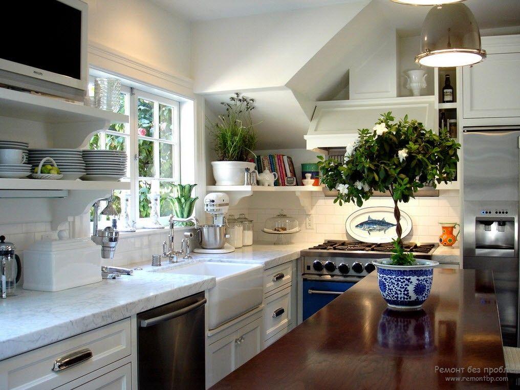 Растения в кухне на фото