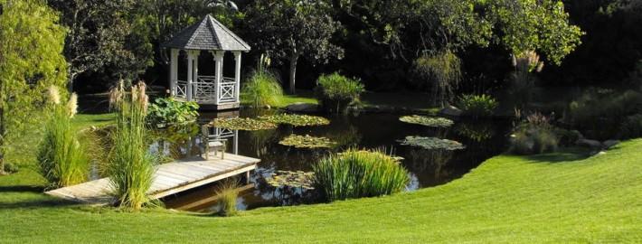 Декоративный пруд: для тех, кто ещё сомневается