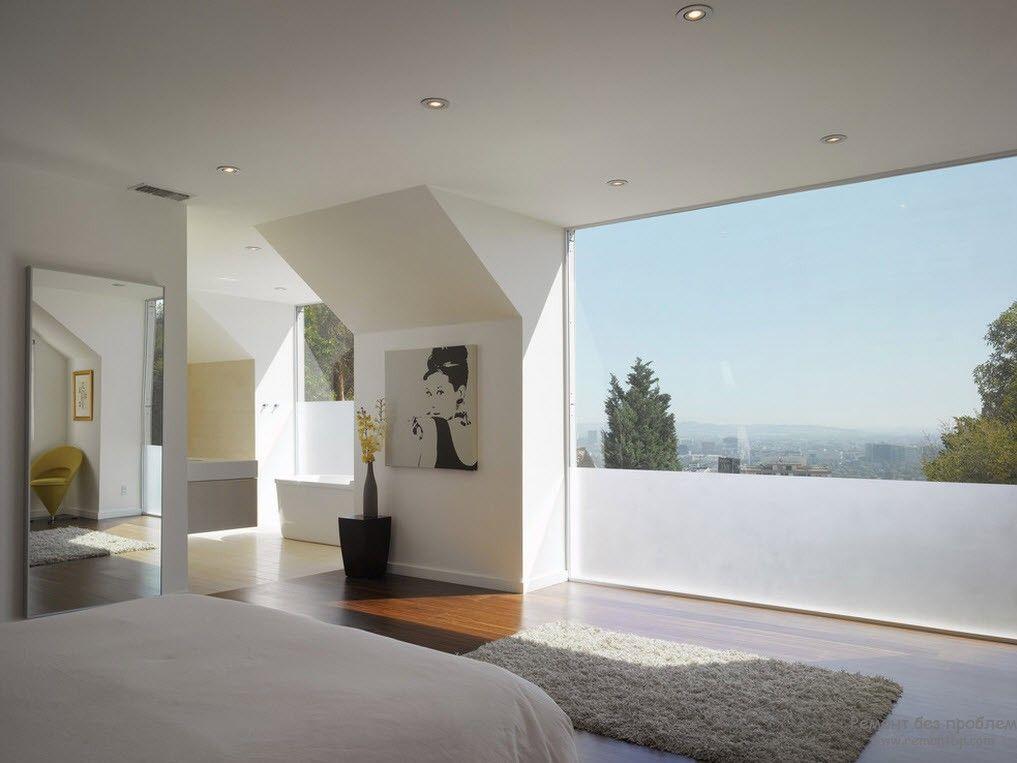 Одно комнатное растение в качестве украшения интерьера спальни