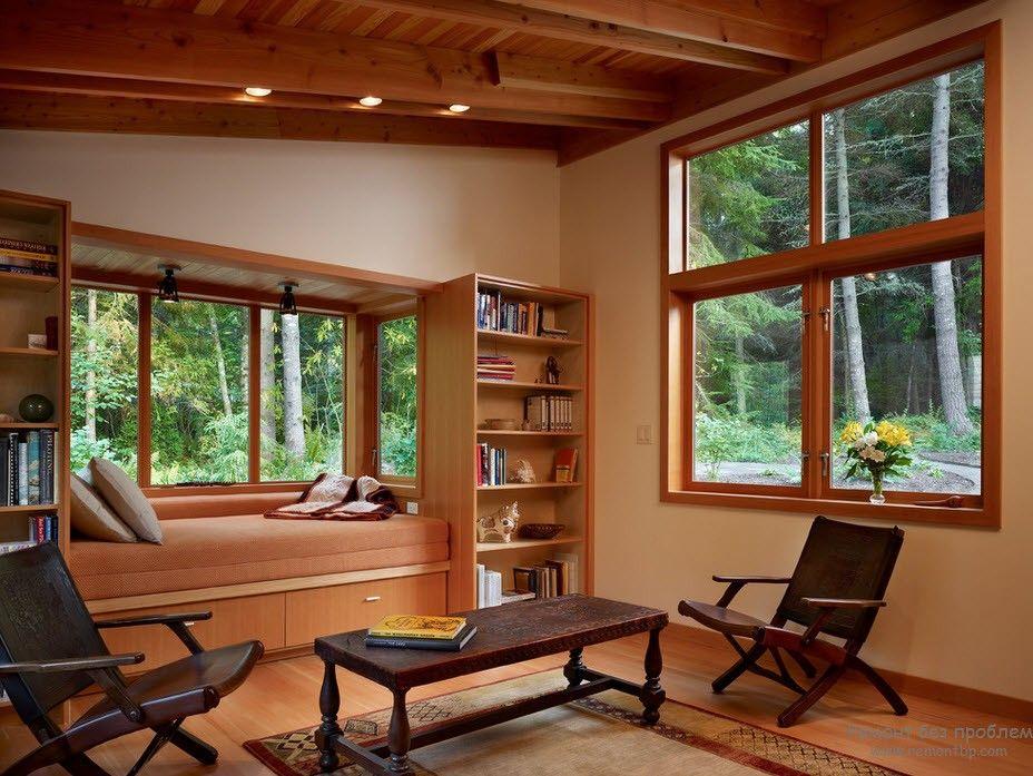 Окно, выделенное книжными шкафами
