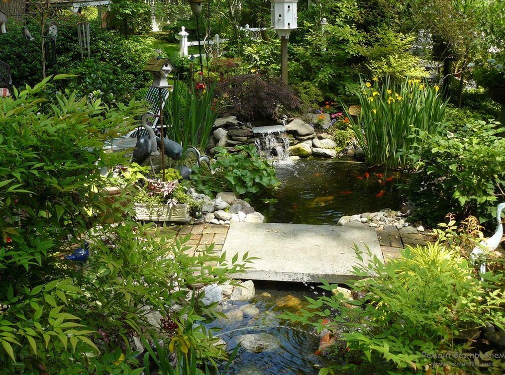 Водное пространство имеет несколько видов декорирования – искусно подобранные растения, мостик, каскад, камни, плитка и скульптурные фигурки журавлей и цапель