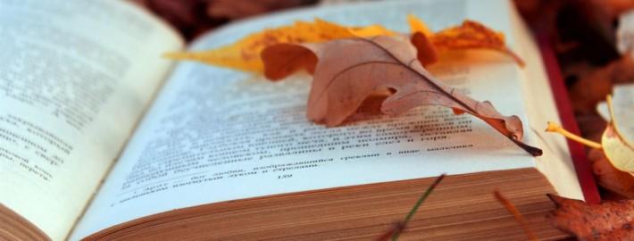 Красивые и необычные книжные полки в интерьере