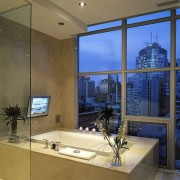 ТВ в ванной