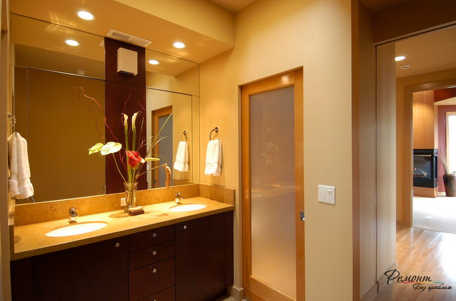 Frosted glass interior bathroom doors