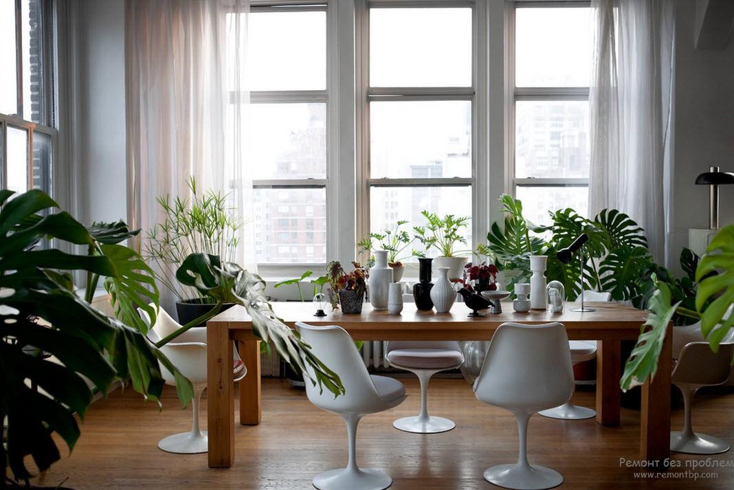 Дерево, зелень растений и светлые тона стен и штор