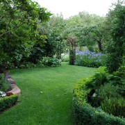 Кусты и деревья у частного дома