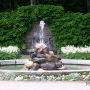Астильба у фонтана