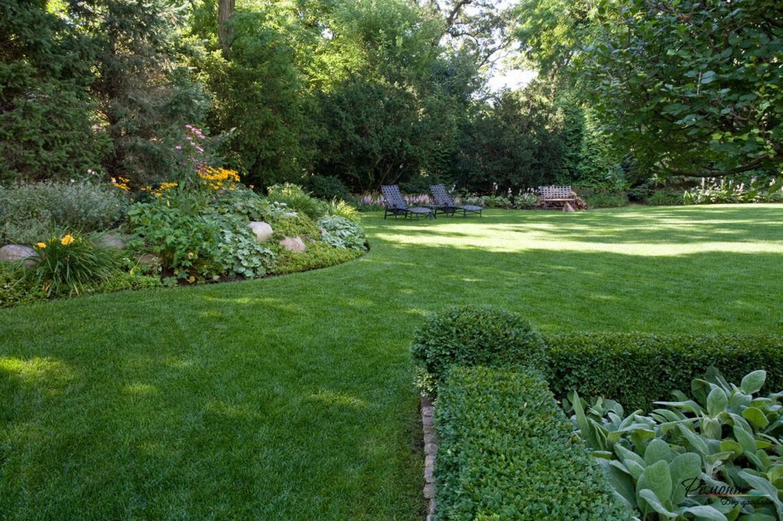 Красивый зеленый участок двора