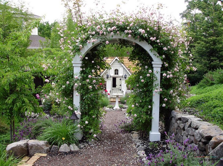 Обвитая розами арка