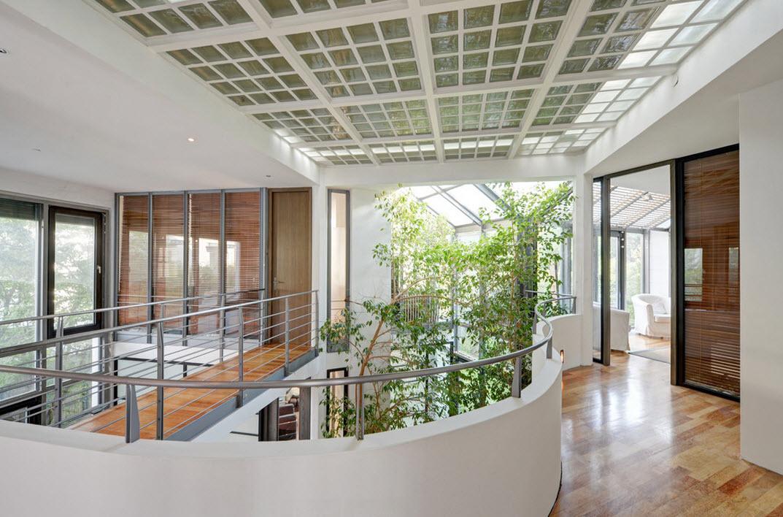 Большие комнатные деревья, как часть дизайна