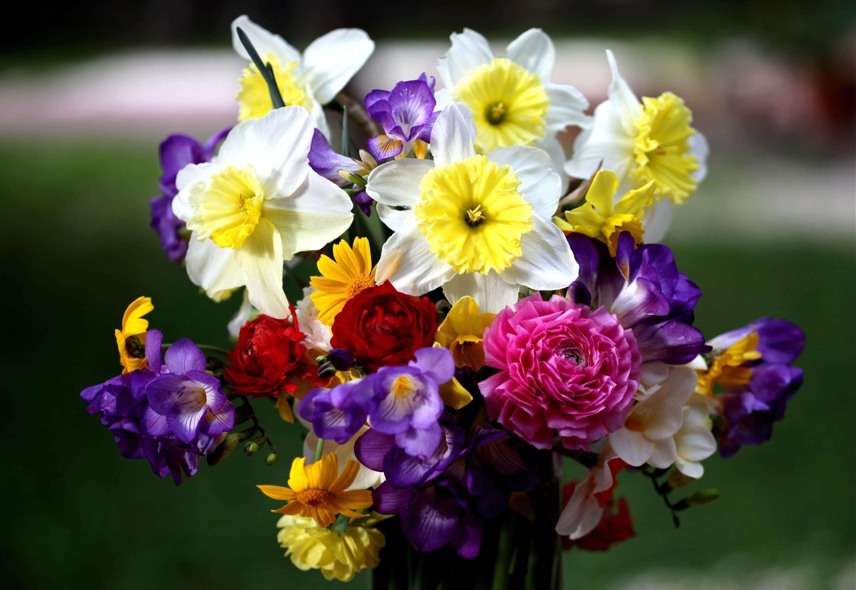 Яркий цветочный ансамбль с фрезиями