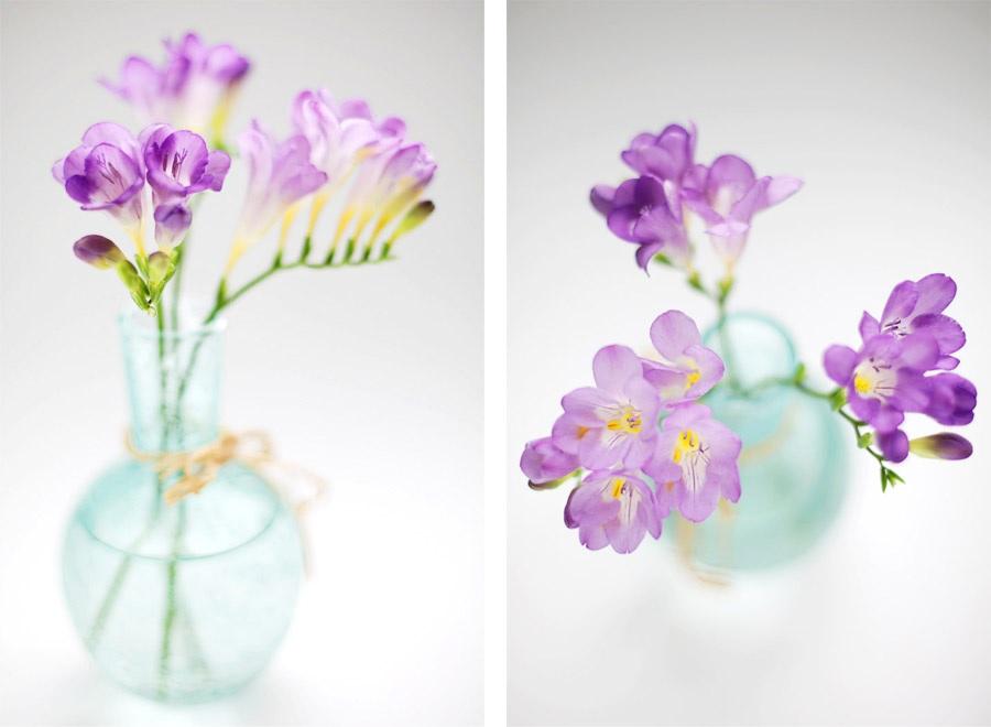Нежные ветки фрезии в вазе