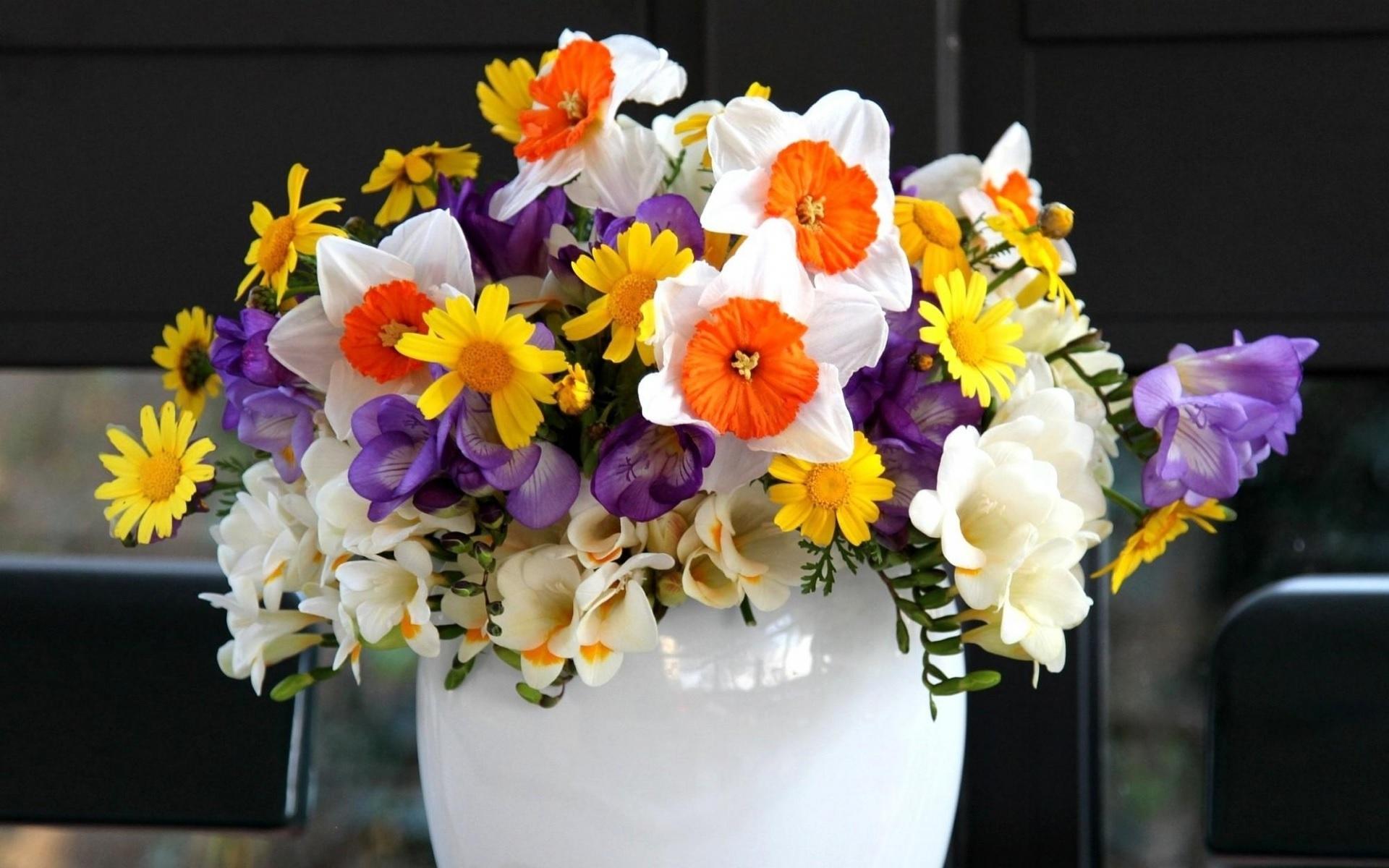 Комбинации фрезии с другими цветами