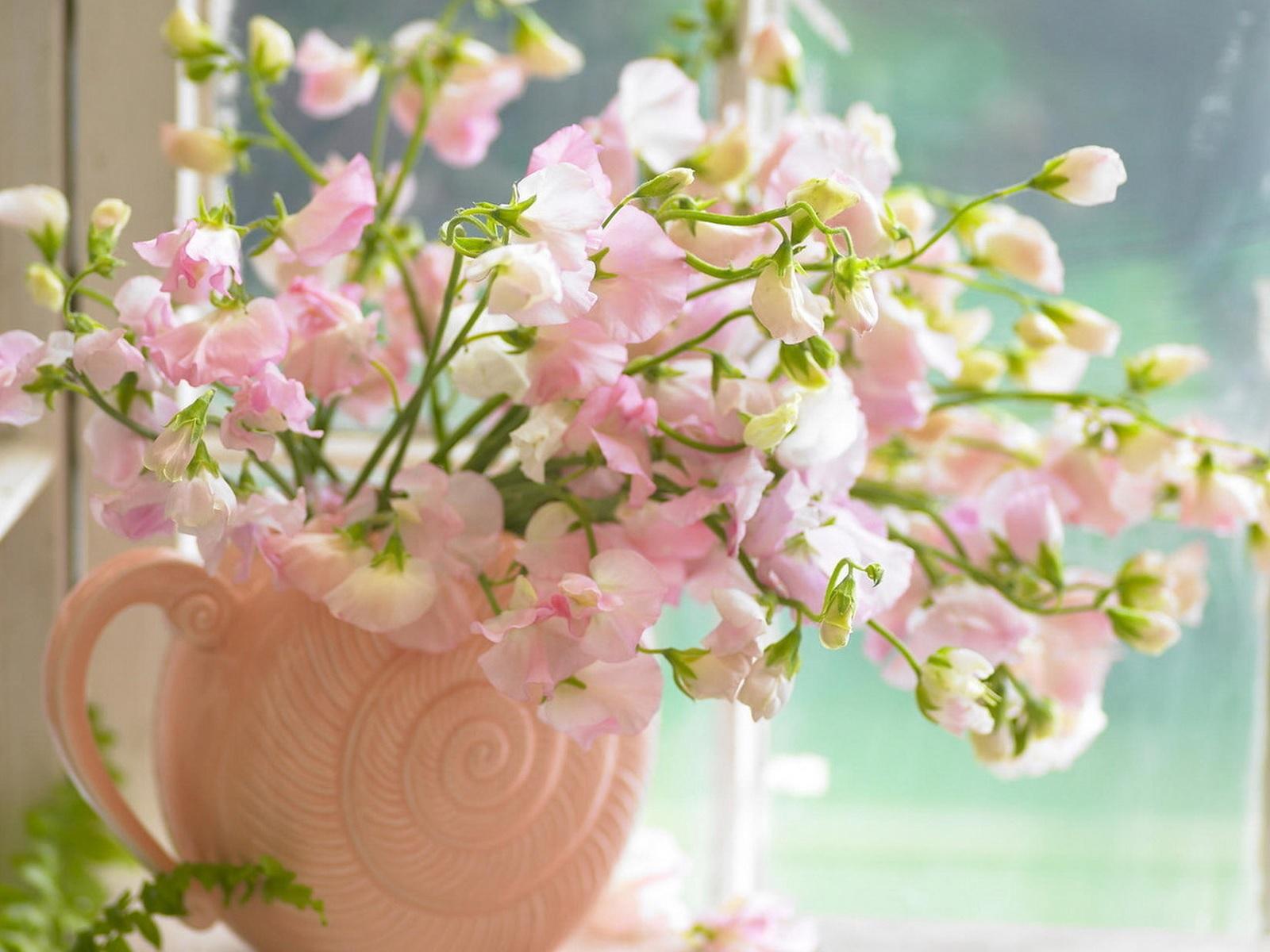 Нежные розовые лепестки лизиантуса