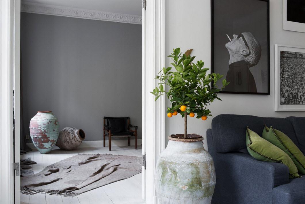 Живые растения - часть интерьера