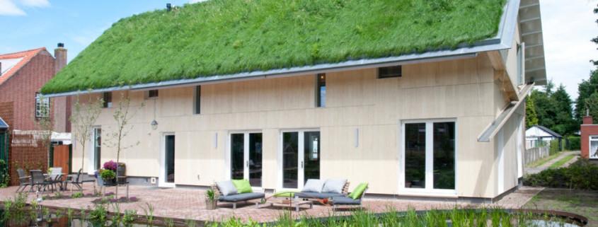 Нетривиальный подход к оформлению фасада частного дома