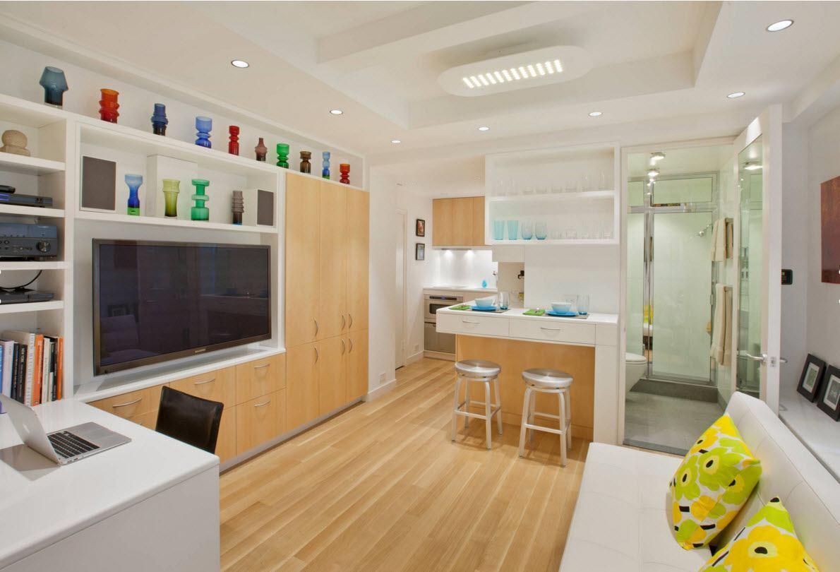 Гостиная зона и кухня