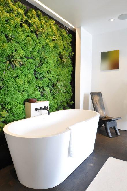 В ванной с живой стеной
