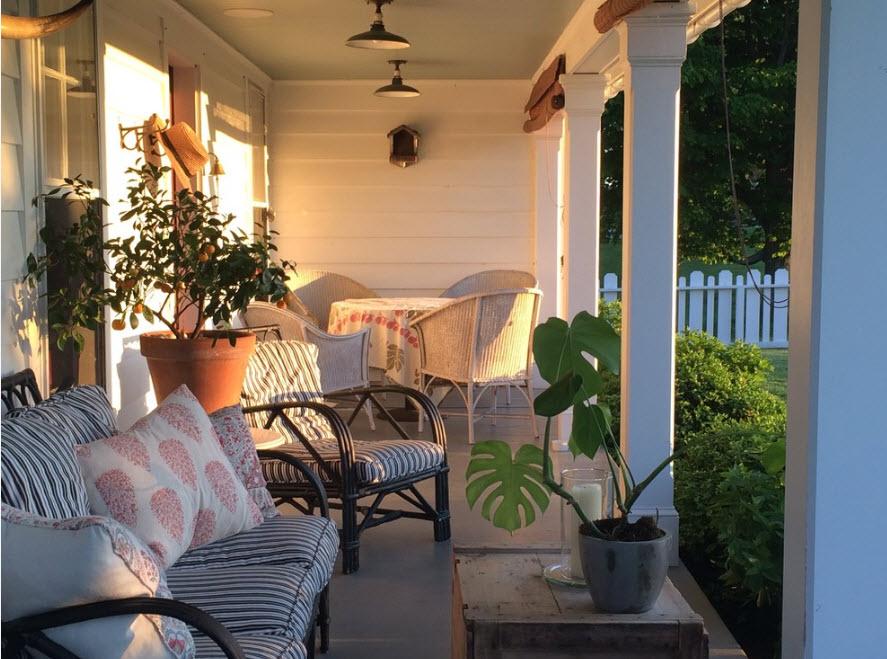 Множество растений и комфортная обстановка