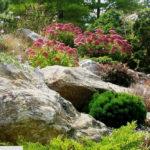 Обустройство сада: калейдоскоп бюджетных идей