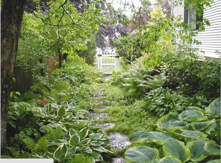 Утопающий в зелени дворик