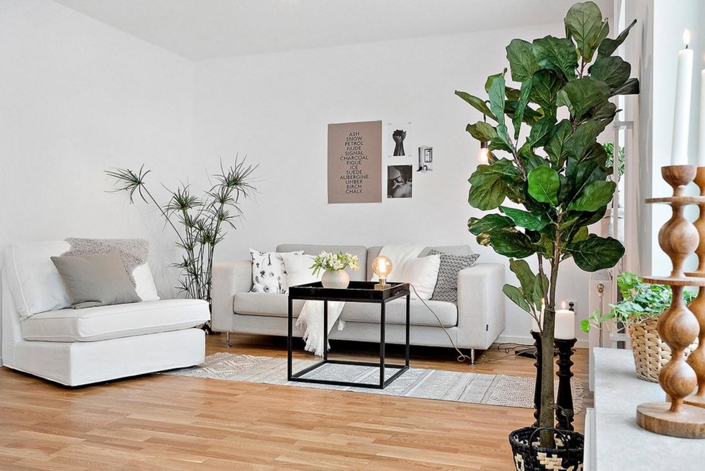 Сочная зелень в белом помещении