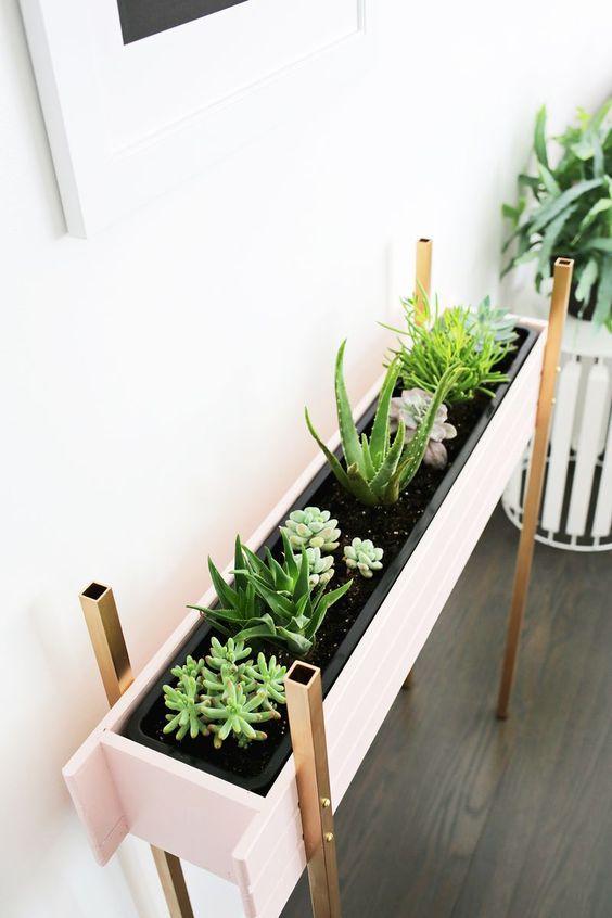 Живые растения в кухне
