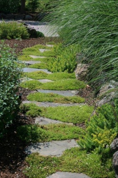 Камень и трава