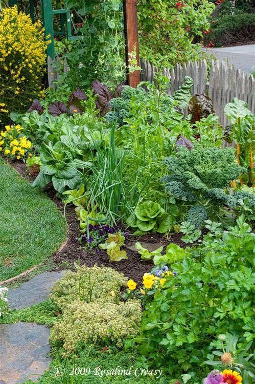 Высадка растений по кругу