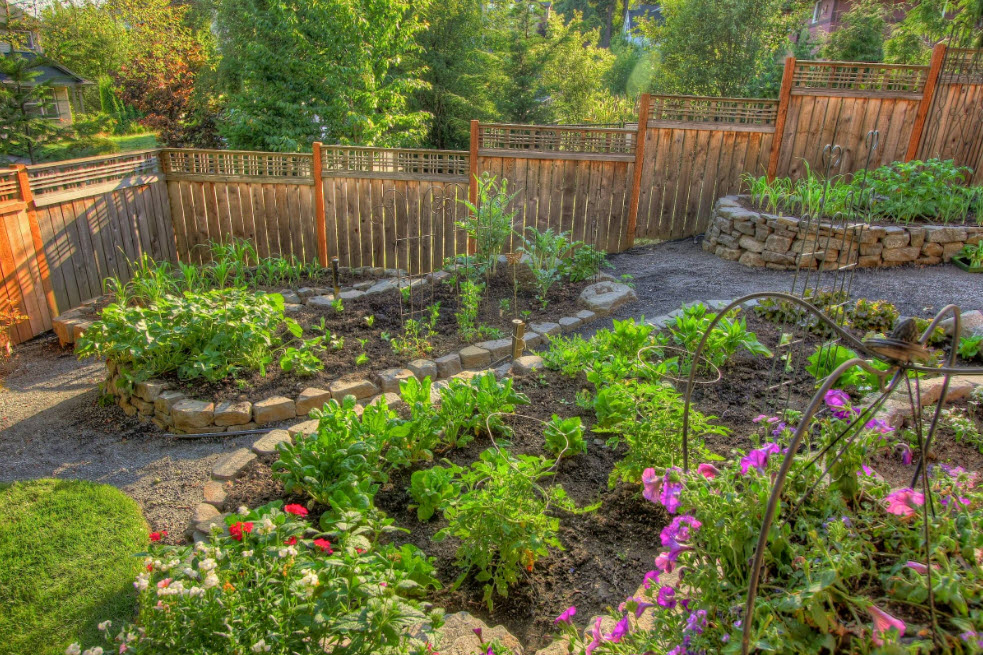 Ограда для садового участка и огорода