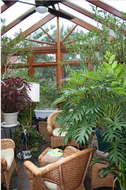 Различные сорта растений
