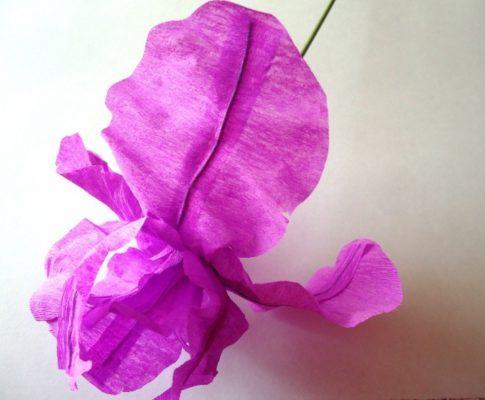 Ирис цветок из гофрированной бумаги