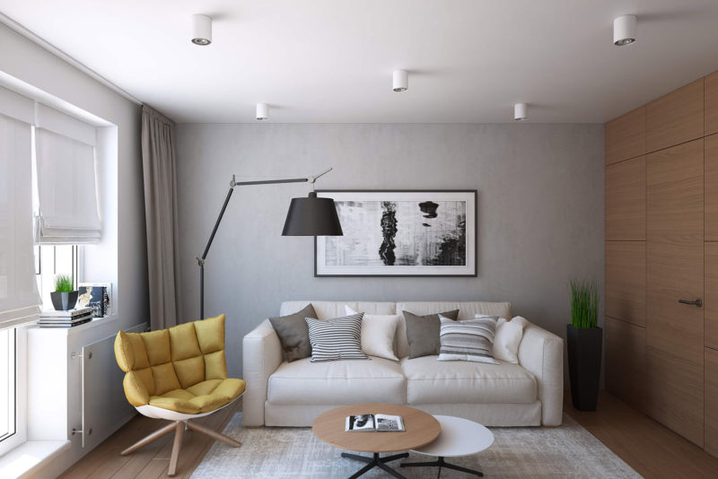 100 лучших идей дизайна: интерьер гостиной 15-16 кв